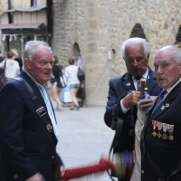 WWII French Veterans
